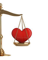 interest in law, love for law